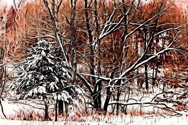 A Winter Fantasy