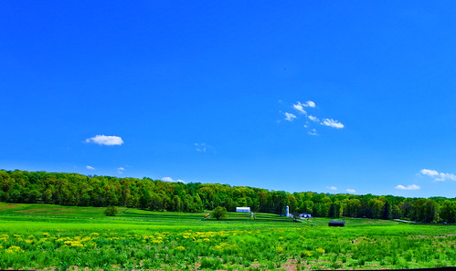 farm green nature maryland spring springtime