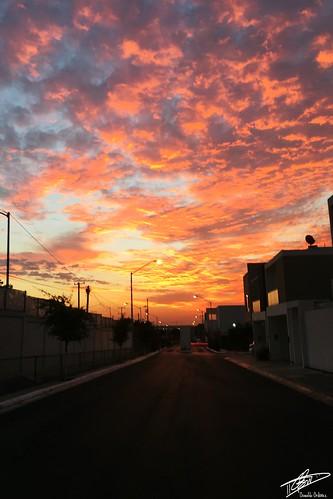 sunrice amanecer color cielo colores colors clouds contraluz cloud