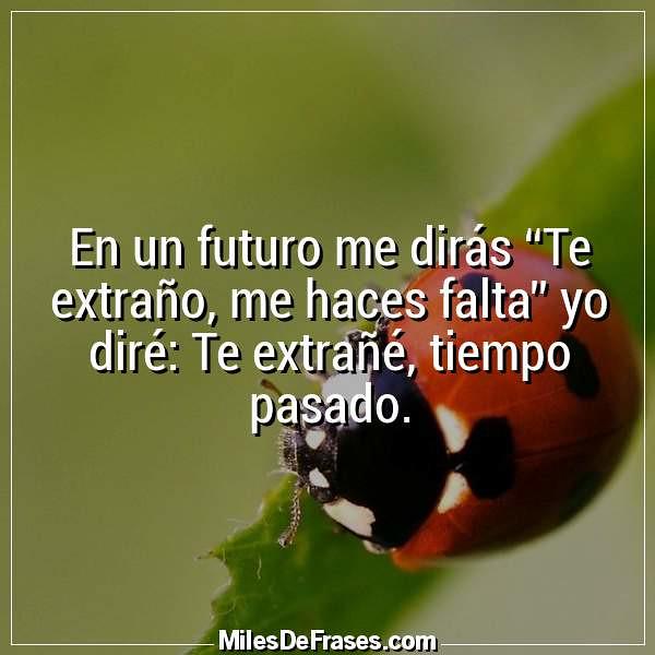 En Un Futuro Me Dirás Te Extraño Me Haces Falta Yo Diré