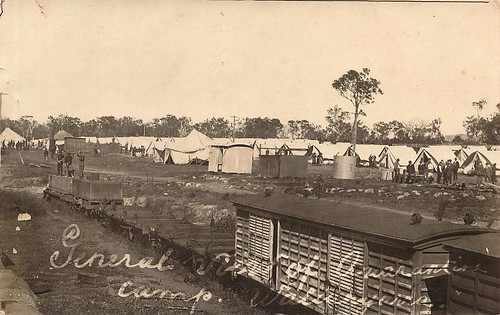 Wallangarra Quarantine Camp, Qld - 1919