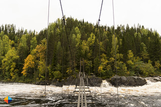 The Hanging Bridge at Storforsen - Would you dare to cross it?