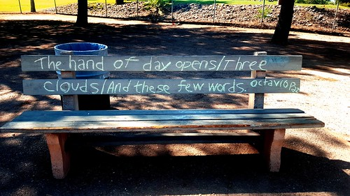 Chalking of Octavio Paz poem on a park bench along the Reid Park Loop. (Urban Poetry Pollinators)