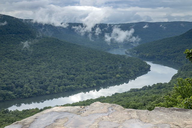 Snoopers Rock overlook detail, Tennessee River, Prentice Cooper SF, Marion County, Tennessee 2