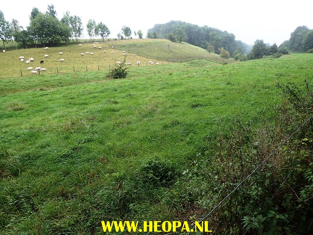 2017-08-12   3e dag   Berg &  Terblijt   28 Km    (114)