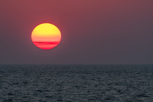 sun capemay atlanticocean sunset nature sunsetboulevard sundown shore fiery orange red westcapemay newjersey unitedstates us nikon d500