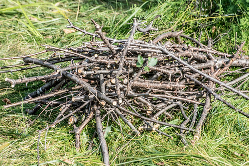 Pile of Sticks | by Stephen Downes