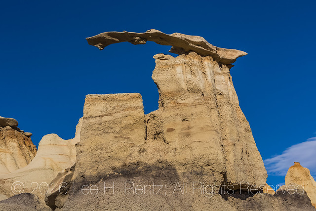 Wing Formation in the Bisti Badlands