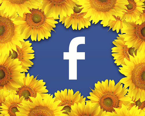 Facebook Logo Surrounded By A Border Of Yellow Flowers | by mikemacmarketing