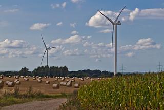 Windräder auf dem Feld