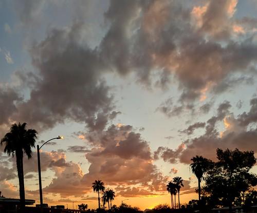 tucson arizona sunset clouds palmtree