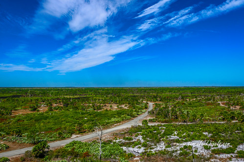 view landscape sky bluesky clouds cloufy weather nature mothernature park statepark jonathandickinsonstatepark martincounty florida usa