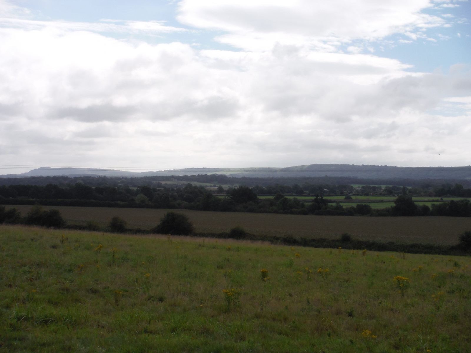 First South Downs Views SWC Walk 294 - Pulborough to Halfway Bridge (via Tillington)