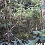 Viajefilos en la Amazonia, Peru 058