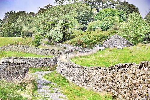 cumbria ambleside swedenbridgelane lakedistrict thelakes stonewalls landscapes trails paths