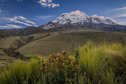 leverdesoleil landscape chuquirahua andes aube chimborazo volcan plante outdoor montagne equateur ecuador dawn mountain sunrise volcano amériquedusud