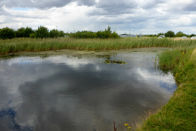 Paull Holme Strays Nature Reserve