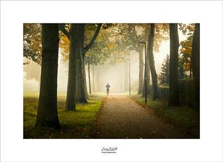 autumn is coming | by Zino2009 (bob van den berg)