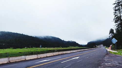 road highway landscape outdoors thewayforward fog tree mountain day beautyinnature