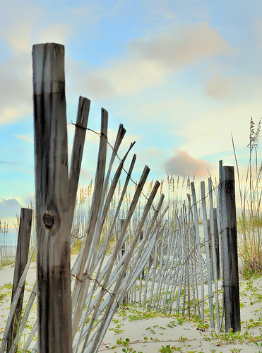 orangebeach topaz landscape beach