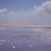 Barra do rio Mamanguape