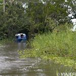 Viajefilos en la Amazonia, Peru 022