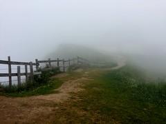 Mt. Rigi, in the fog