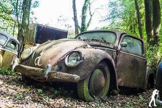 Lost Places: Cars | by smartphoto78