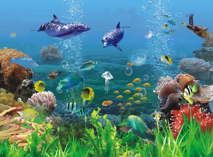 wallpaper pemandangan bawah laut kartun  via Blogger ift.ttu2026  Flickr