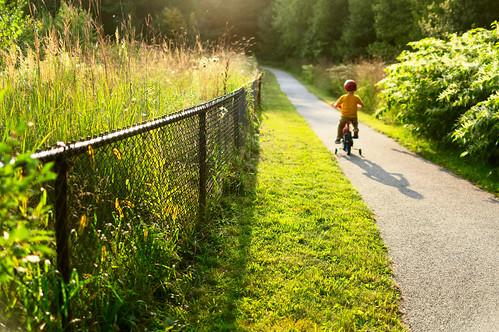 kid child bike trainingwheels sun sunset charlie green grass fence shadow america chancyrendezvous davelawler blurgasm lawler