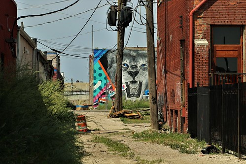 art mural publicart streetart alley weeds wires jungle wirejungle grafitti lion teeth redbrick steelfence debris trash woodpallet detroit easternmarket downtown michigan jannagalski jannagal urban city buildings decay rejuvenation rebuilding trafficcone boxes poles innercity urbanjungle
