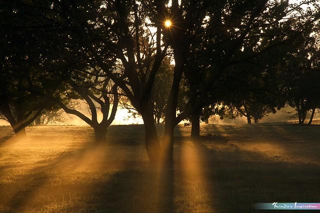 Rising Sun in Autumn *A Beautiful Nature*