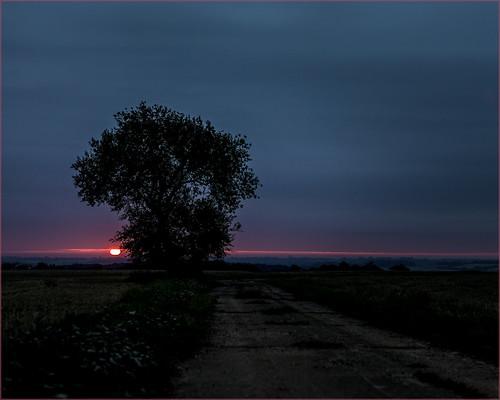 sunrise early raflittlewalden canon carlzeiss lintonsnapper essex