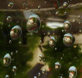 P1080046 Raindrops / Window