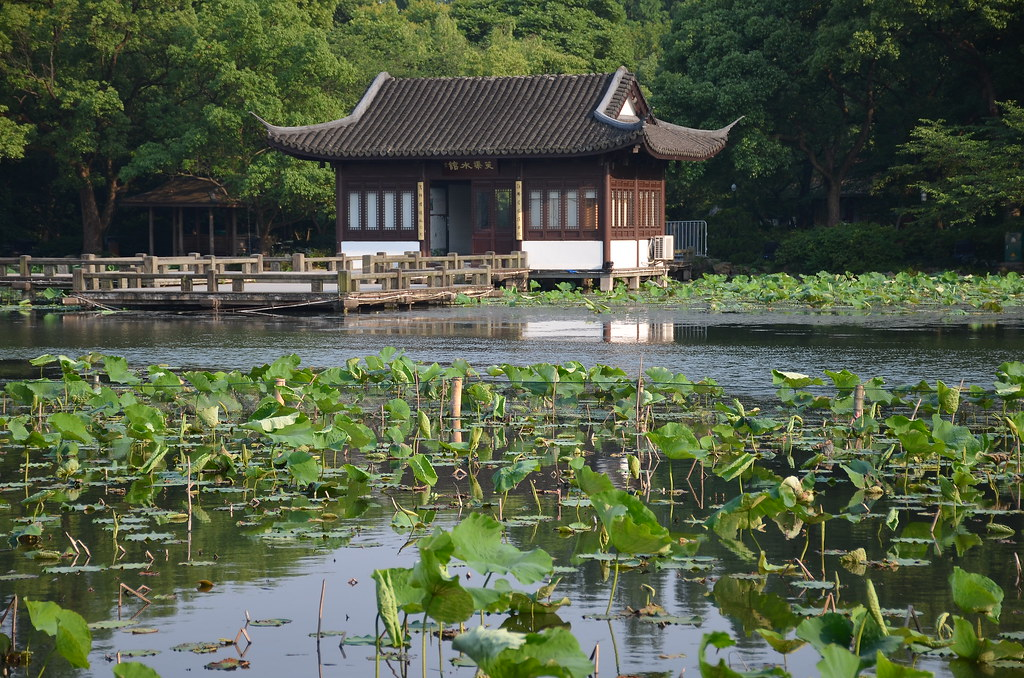 Xixi Wetland Park- love the foreground!