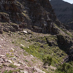 Goat trail used for Red Mountain descent