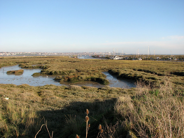 Marshes near Canvey Point, Canvey Island