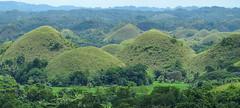 Kegelkarst (Karst tropical en conos) - Chocolate Hills (Bohol, Filipinas) - 03