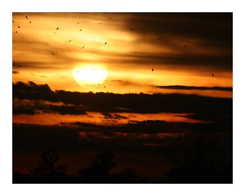 sunsets mwilliams angryglock