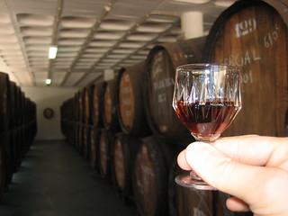 Madeira's Wine | by luisvilla