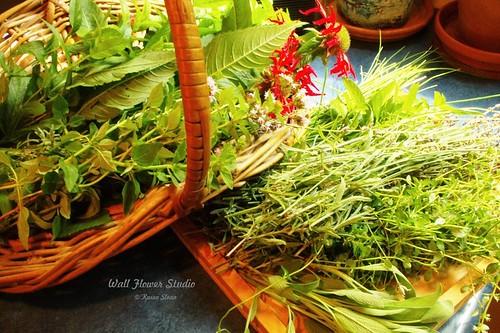 Herb harvest   by Karen @ Wall Flower Studio
