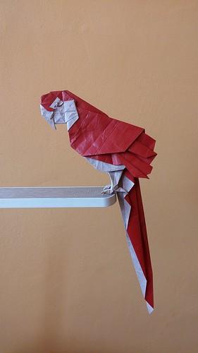 Parrot by Tomasz Krawczyk | by Tomasz Krawczyk Origami