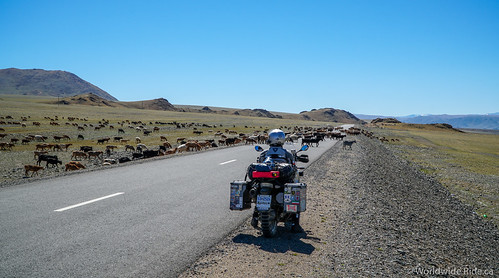 Mongolia Uglii to Khvod-6 | by Worldwide Ride.ca