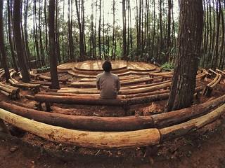 Panggung terbuka hutan pinus Mangunan | by lajwania