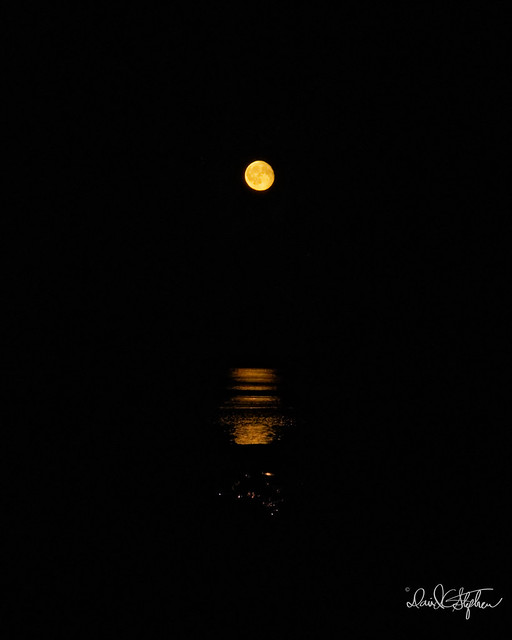 Moonrise On Final Night