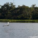 Viajefilos en la Amazonia, Peru 140
