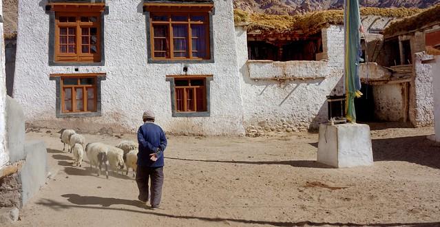 Yangtang village, India 2016
