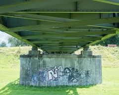 RHE233 Rietbrücke Road Bridge over the Alpenrhein River, Diepoldsau, Canton St. Gallen, Switzerland