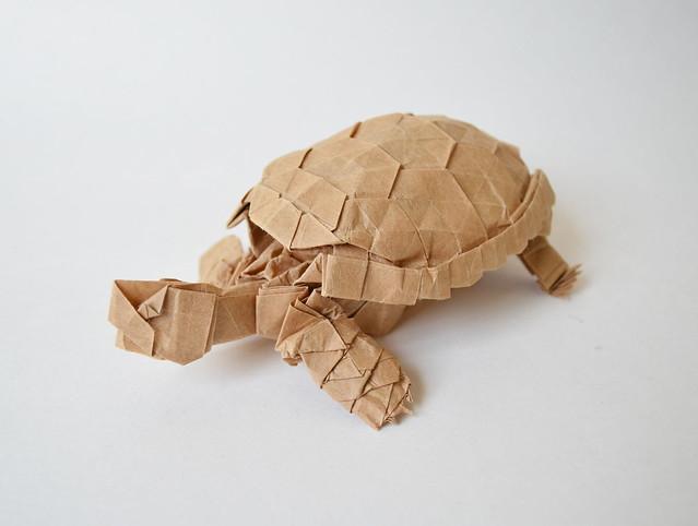 Tortoise ver. 2