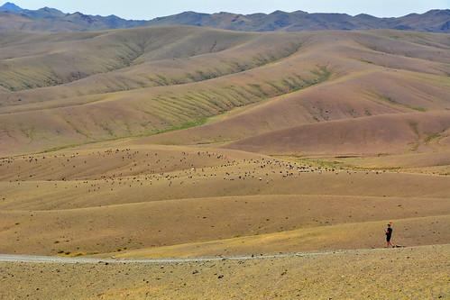 mongolia gobi desierto desert paisaje landscape